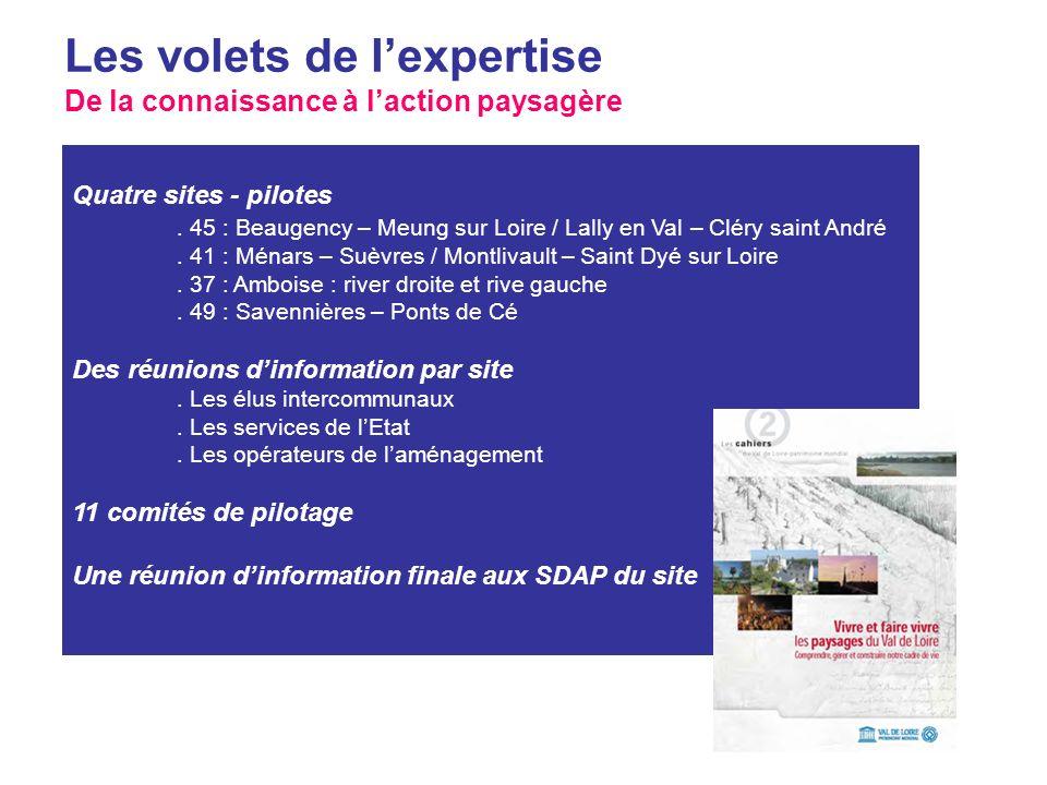 Des principes dentvalorisation paysagère à léchelle du site Projet interrégional « Paysages du Val de Loire » Quatre sites - pilotes. 45 : Beaugency –