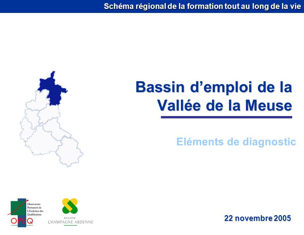 Schéma régional de la formation tout au long de la vie Bassin demploi de la Vallée de la Meuse Eléments de diagnostic 22 novembre 2005