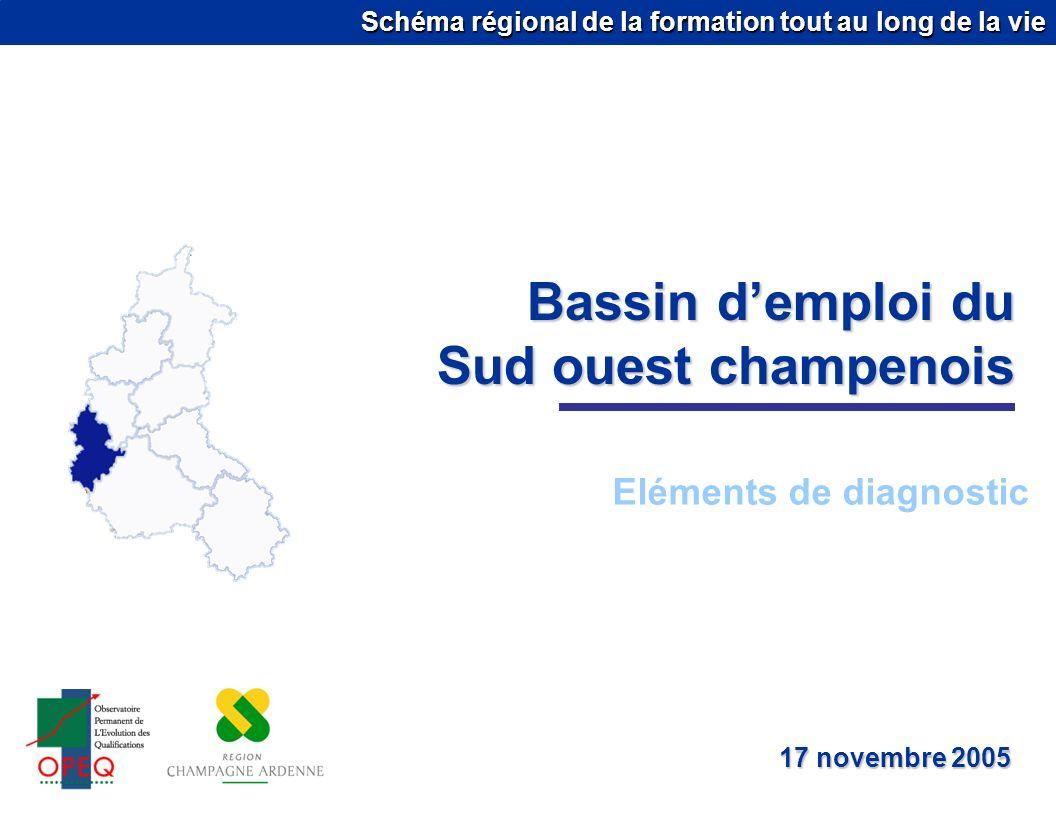 Schéma régional de la formation tout au long de la vie Bassin demploi du Sud ouest champenois Eléments de diagnostic 17 novembre 2005