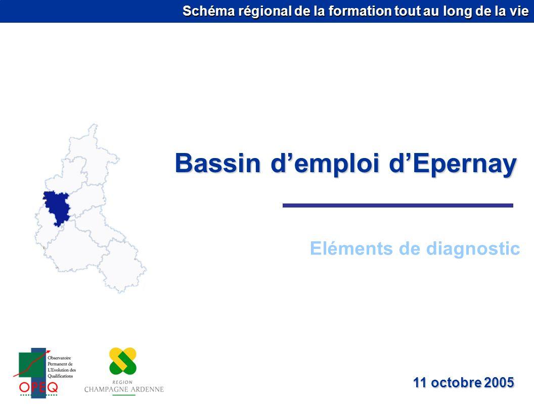 Schéma régional de la formation tout au long de la vie Bassin demploi dEpernay Eléments de diagnostic 11 octobre 2005