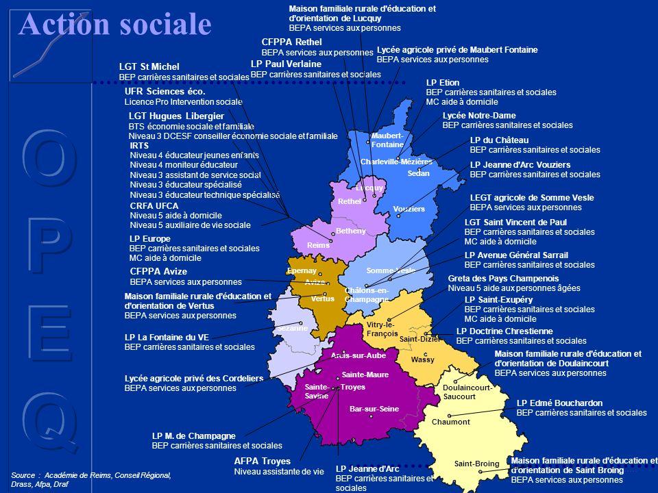 Action sociale Source : Académie de Reims, Conseil Régional, Drass, Afpa, Draf CFPPA Avize BEPA services aux personnes LP La Fontaine du VE BEP carriè