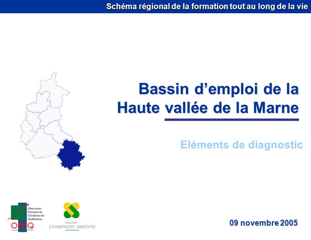 Schéma régional de la formation tout au long de la vie Bassin demploi de la Haute vallée de la Marne Eléments de diagnostic 09 novembre 2005