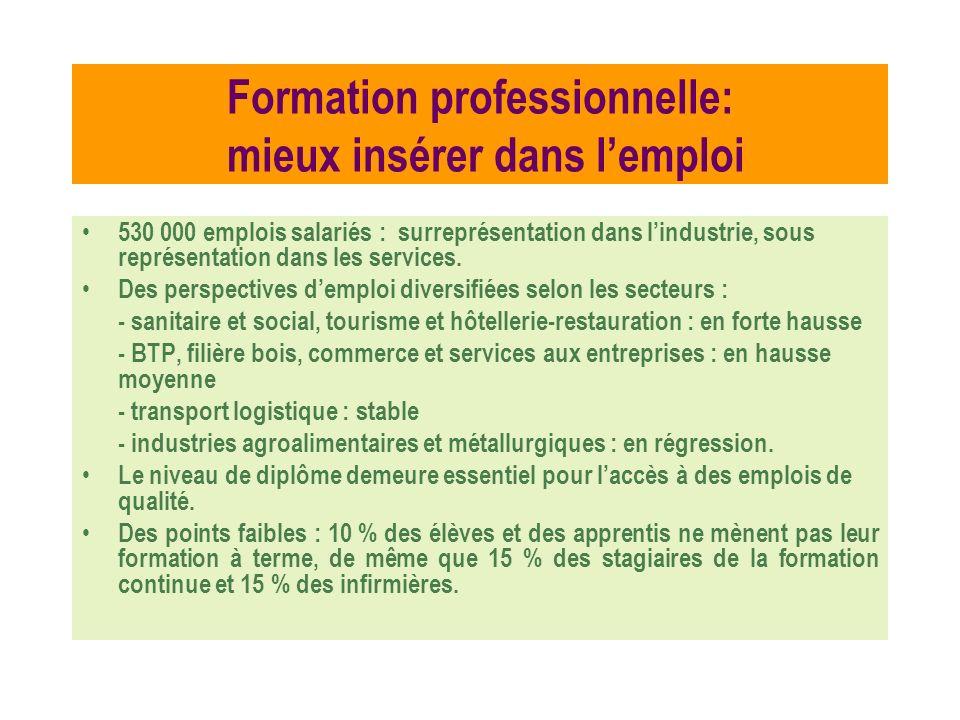 Formation professionnelle: mieux insérer dans lemploi 530 000 emplois salariés : surreprésentation dans lindustrie, sous représentation dans les servi