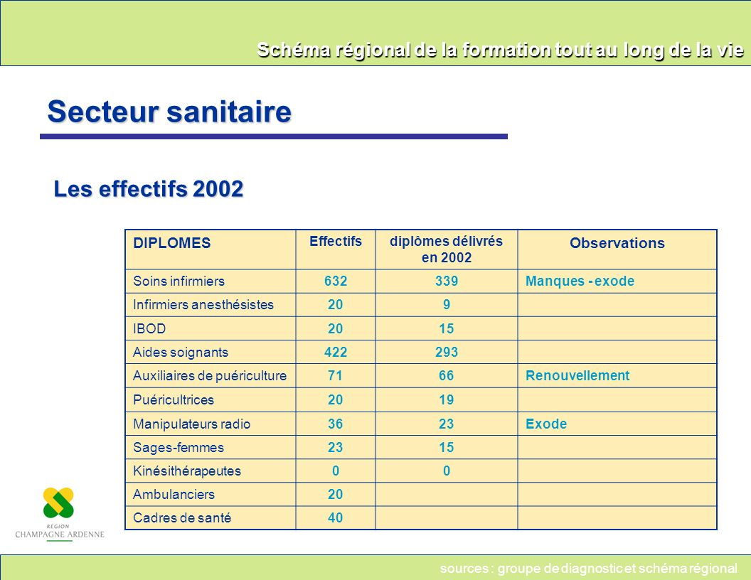 Schéma régional de la formation tout au long de la vie Secteur sanitaire Les effectifs 2002 DIPLOMES Effectifsdiplômes délivrés en 2002 Observations S