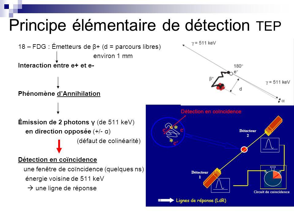 Principe élémentaire de détection TEP 18 – FDG : Émetteurs de β+ (d = parcours libres) environ 1 mm Interaction entre e+ et e- Phénomène dAnnihilation