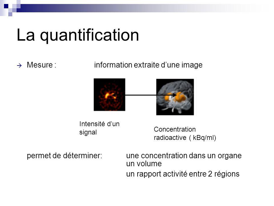 La quantification Mesure : information extraite dune image permet de déterminer: une concentration dans un organe un volume un rapport activité entre