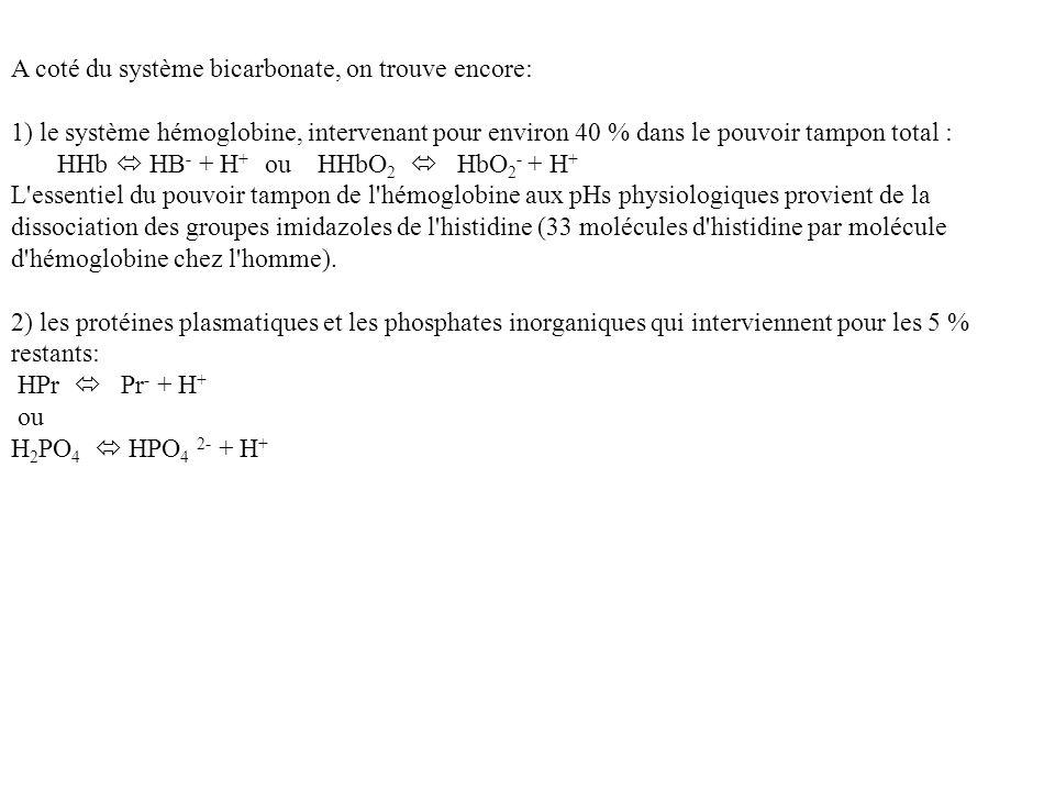A coté du système bicarbonate, on trouve encore: 1) le système hémoglobine, intervenant pour environ 40 % dans le pouvoir tampon total : HHb HB - + H