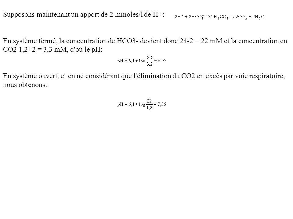 Supposons maintenant un apport de 2 mmoles/l de H+: En système fermé, la concentration de HCO3- devient donc 24-2 = 22 mM et la concentration en CO2 1