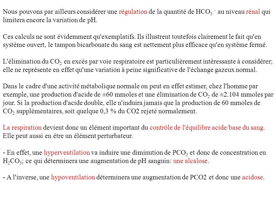 Nous pouvons par ailleurs considérer une régulation de la quantité de HCO 3 - au niveau rénal qui limitera encore la variation de pH. Ces calculs ne s