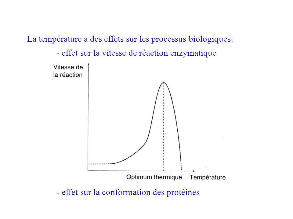 La température a des effets sur les processus biologiques: - effet sur la vitesse de réaction enzymatique - effet sur la conformation des protéines