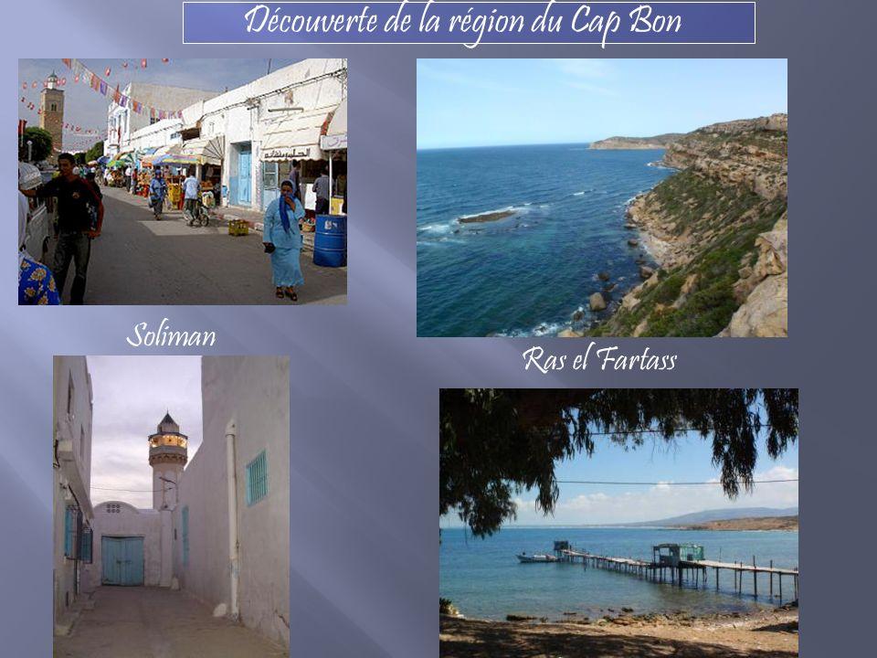 Découverte de la région du Cap Bon Soliman Ras el Fartass