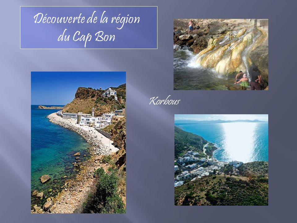 Découverte de la région du Cap Bon Korbous