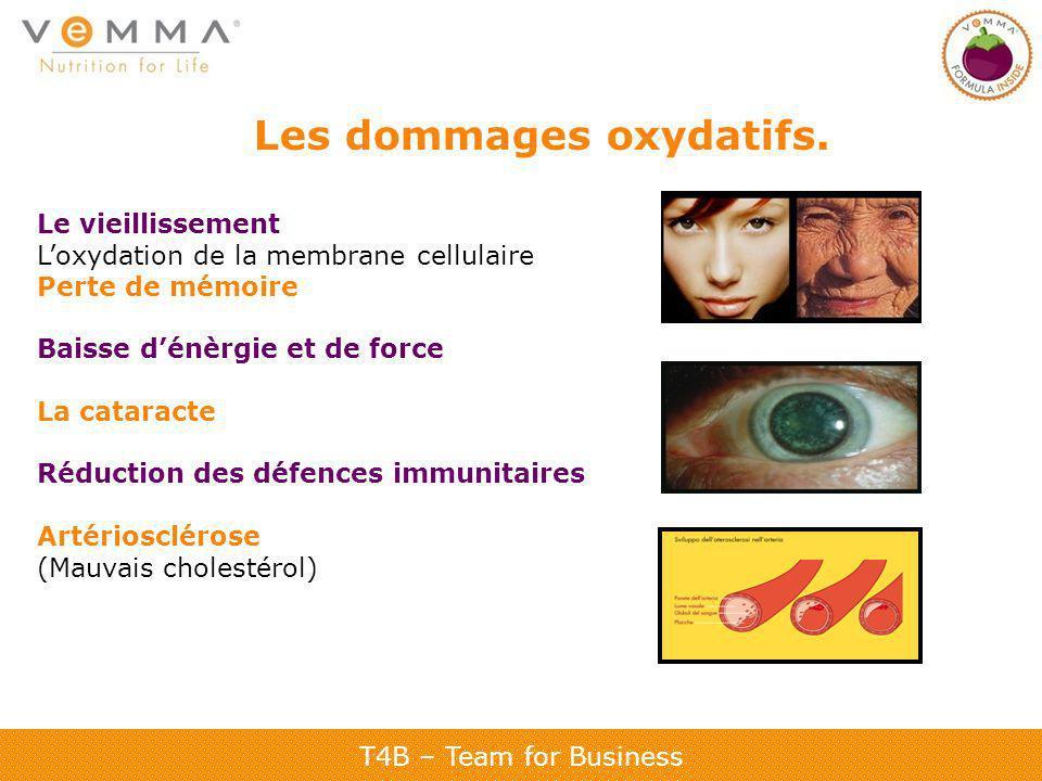 T4B – Team for Business Les dommages oxydatifs. Le vieillissement Loxydation de la membrane cellulaire Perte de mémoire Baisse dénèrgie et de force La