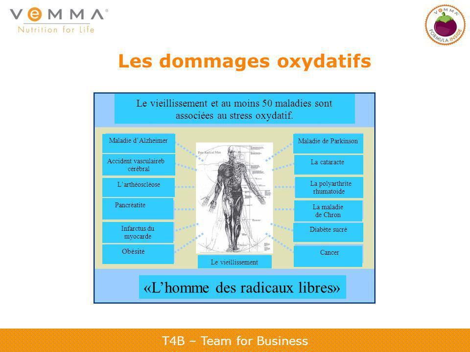 T4B – Team for Business Les dommages oxydatifs Le vieillissement et au moins 50 maladies sont associées au stress oxydatif. Maladie dAlzheimer Maladie