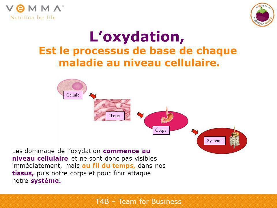 T4B – Team for Business Loxydation, Est le processus de base de chaque maladie au niveau cellulaire. Les dommage de loxydation commence au niveau cell