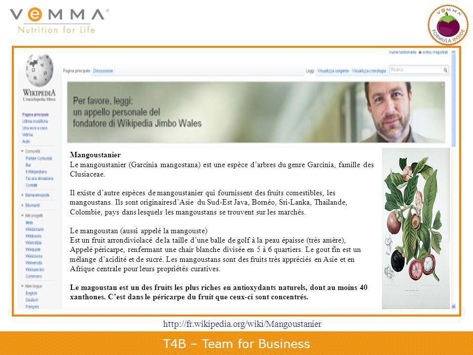 T4B – Team for Business Mangoustanier Le mangoustanier (Garcinia mangostana) est une espèce darbres du genre Garcinia, famille des Clusiaceae.