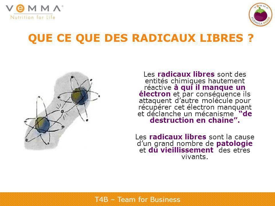 T4B – Team for Business QUE CE QUE DES RADICAUX LIBRES .