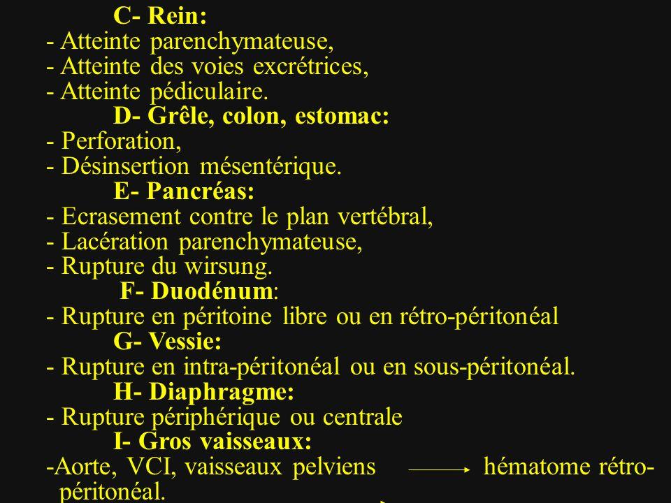 C- Rein: - Atteinte parenchymateuse, - Atteinte des voies excrétrices, - Atteinte pédiculaire. D- Grêle, colon, estomac: - Perforation, - Désinsertion