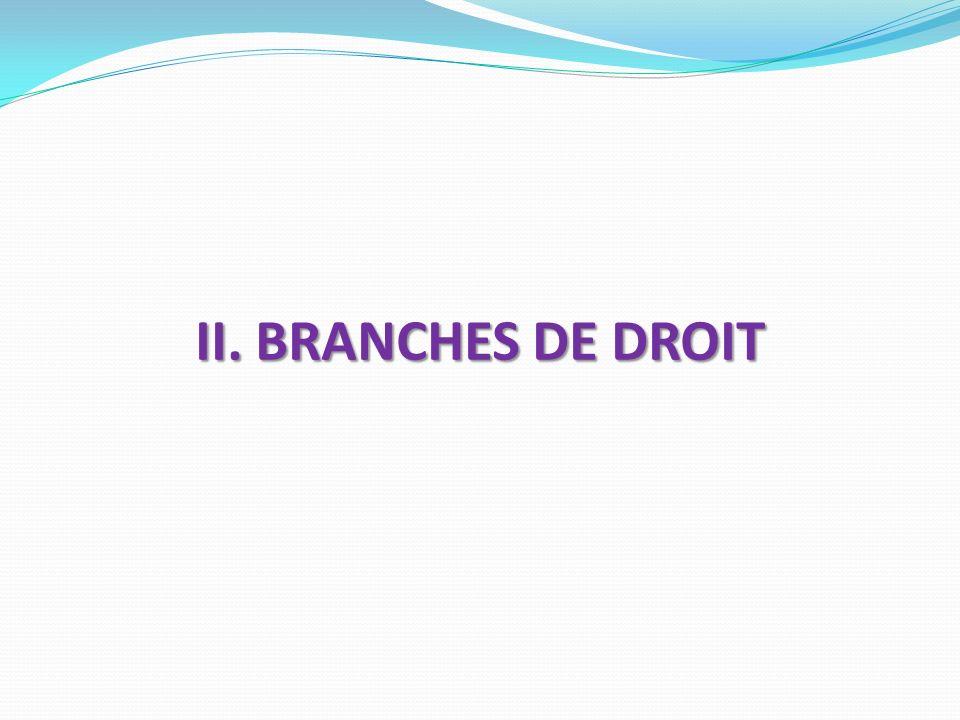 II. BRANCHES DE DROIT