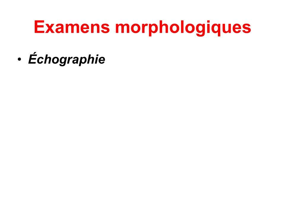 Examens morphologiques Échographie
