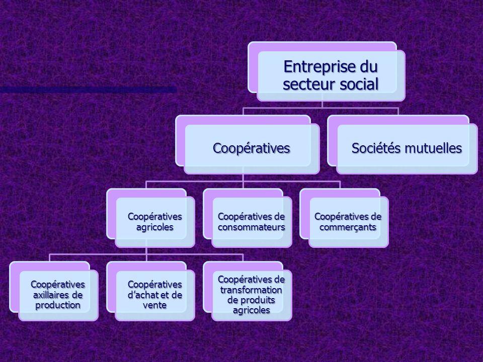 Entreprise du secteur social Coopératives Coopératives agricoles Coopératives axillaires de production Coopératives dachat et de vente Coopératives de