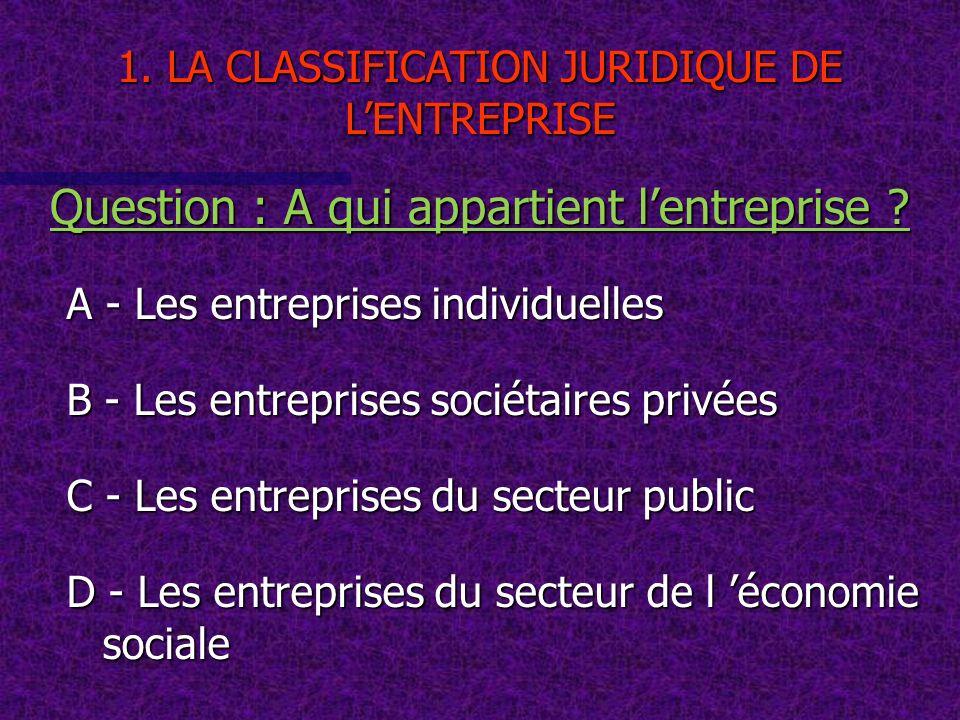A - Les entreprises individuelles B - Les entreprises sociétaires privées C - Les entreprises du secteur public D - Les entreprises du secteur de l éc
