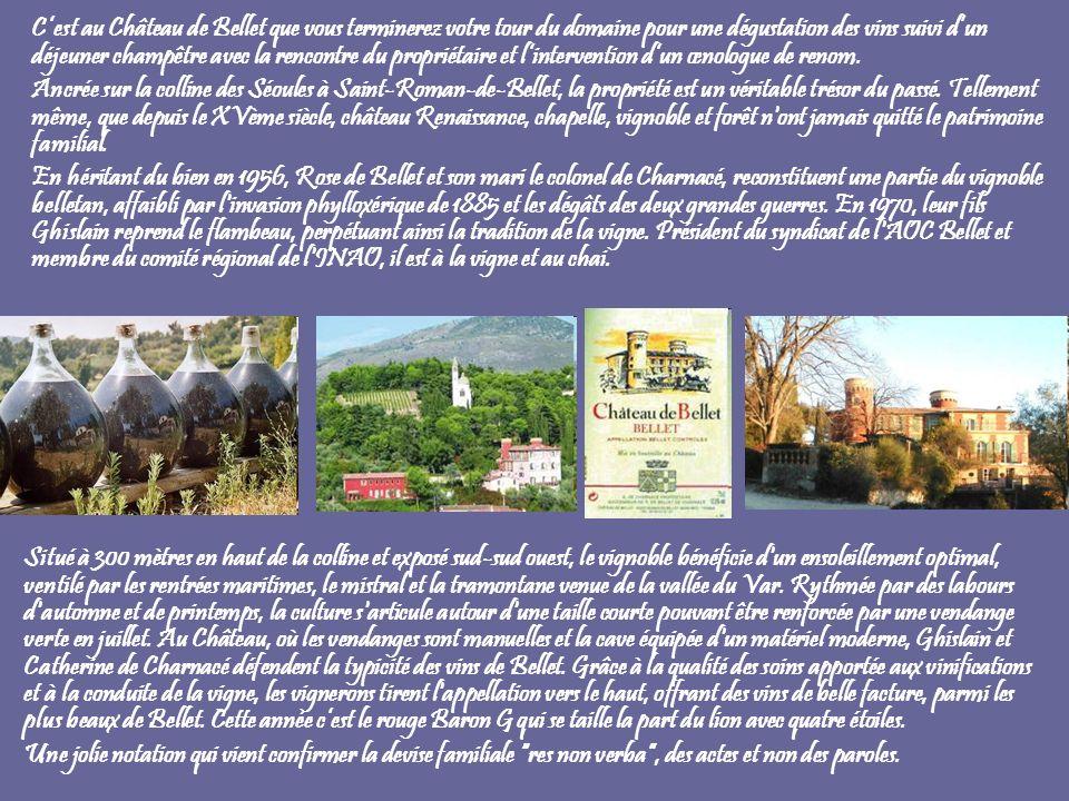 Cest au Château de Bellet que vous terminerez votre tour du domaine pour une dégustation des vins suivi dun déjeuner champêtre avec la rencontre du pr