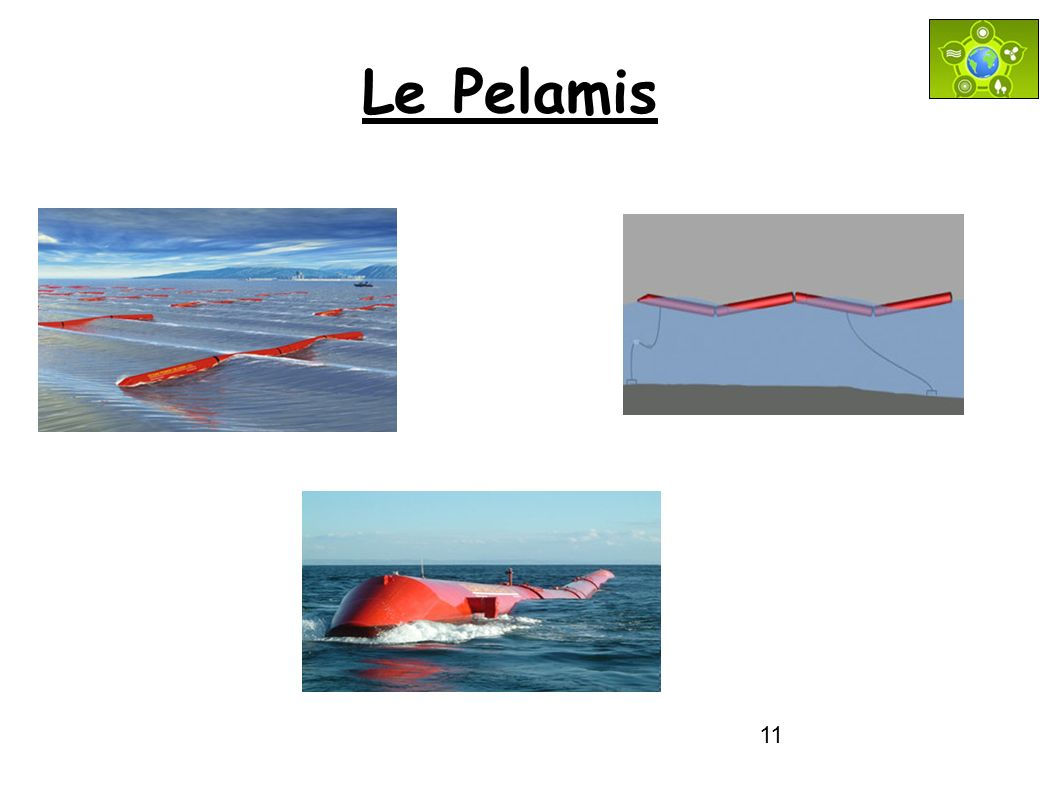 11 Le Pelamis