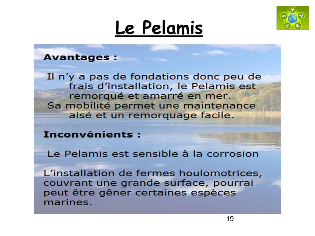19 Le Pelamis