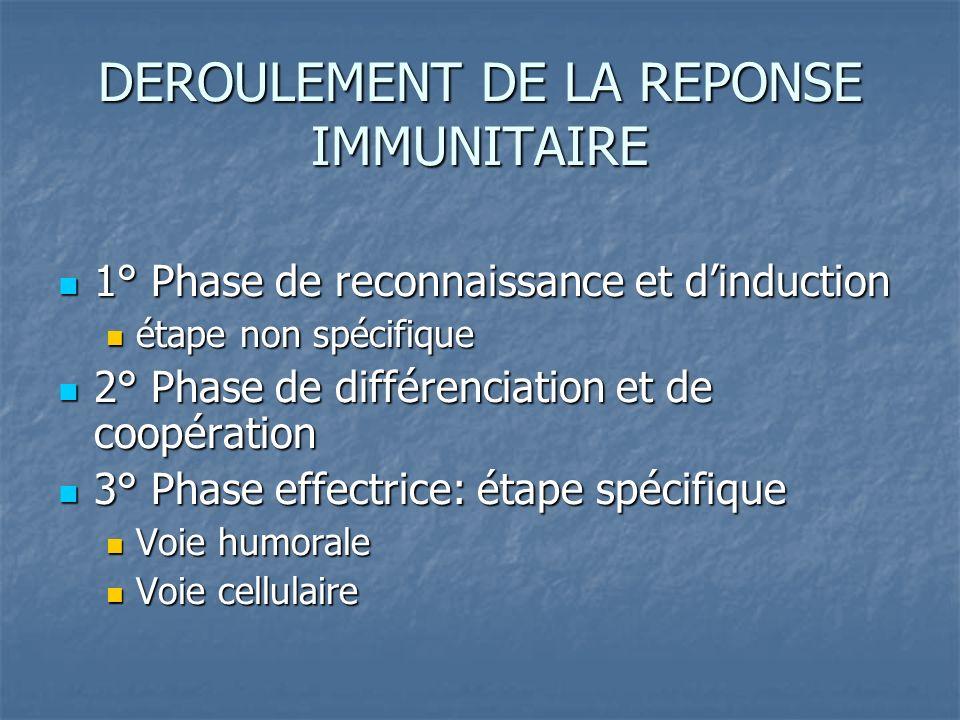 DEROULEMENT DE LA REPONSE IMMUNITAIRE 1° Phase de reconnaissance et dinduction 1° Phase de reconnaissance et dinduction étape non spécifique étape non