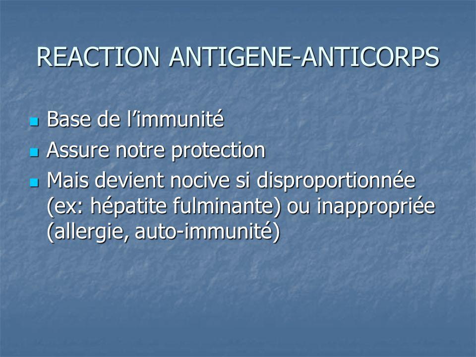 REACTION ANTIGENE-ANTICORPS Base de limmunité Base de limmunité Assure notre protection Assure notre protection Mais devient nocive si disproportionné