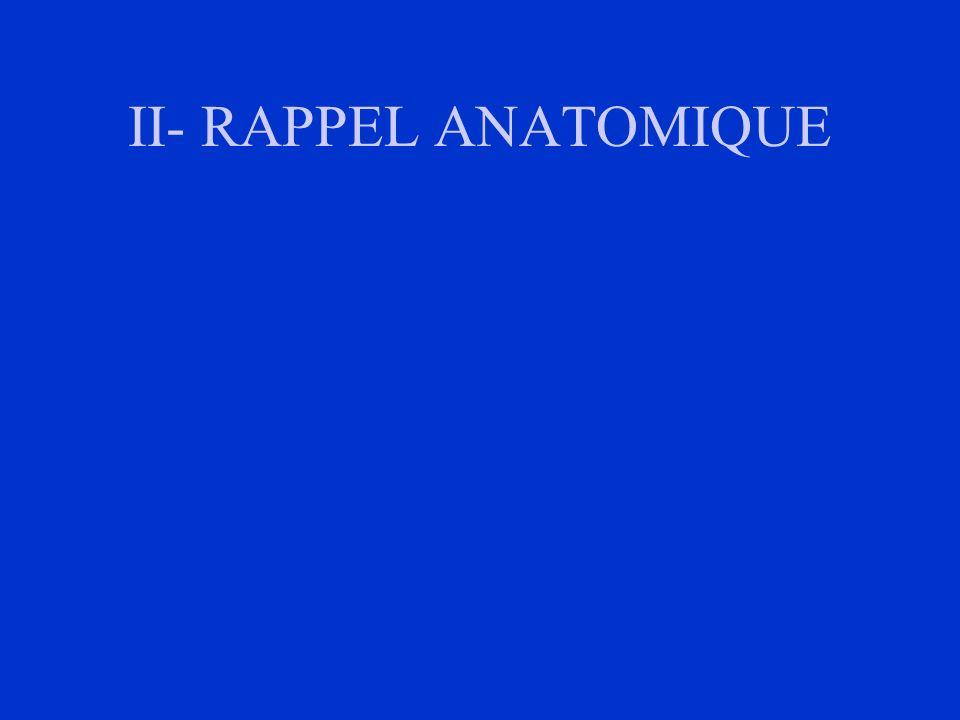 - Tomodensitométrie thoracique: * extension aux organes de voisinage: aorte: trachée, bronche, péricarde; * adénopathies médiatinales.