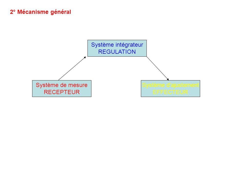 2° Mécanisme général Système intégrateur REGULATION Système de mesure RECEPTEUR Système dajustement EFFECTEUR