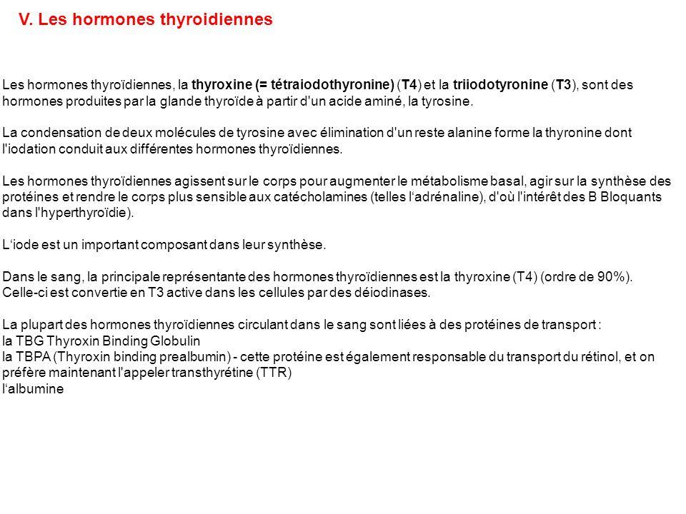 Les hormones thyroïdiennes, la thyroxine (= tétraiodothyronine) (T4) et la triiodotyronine (T3), sont des hormones produites par la glande thyroïde à
