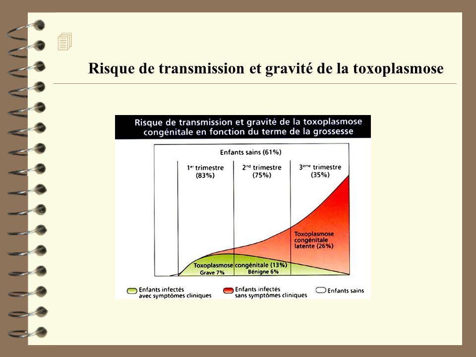 4 Risque de transmission et gravité de la toxoplasmose