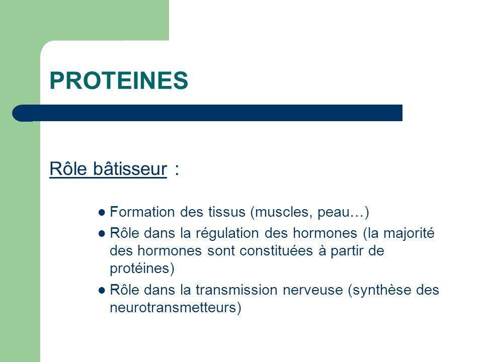 PROTEINES Rôle bâtisseur : Formation des tissus (muscles, peau…) Rôle dans la régulation des hormones (la majorité des hormones sont constituées à par