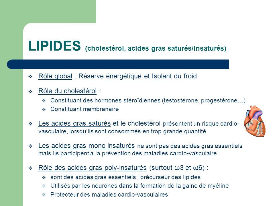 LIPIDES (cholestérol, acides gras saturés/insaturés) Rôle global : Réserve énergétique et Isolant du froid Rôle du cholestérol : Constituant des hormo