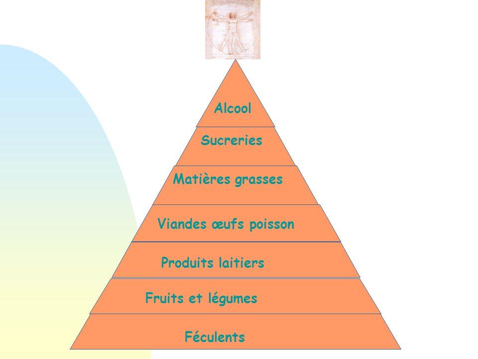 Féculents Fruits et légumes Produits laitiers Viandes œufs poisson Matières grasses Sucreries Alcool Population française