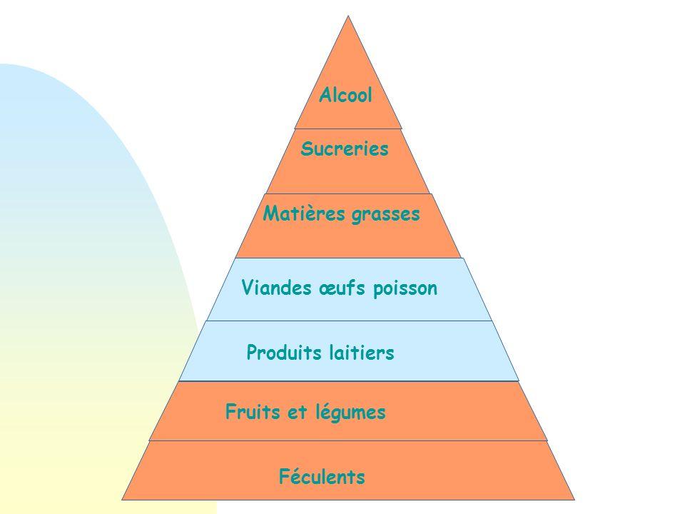 Féculents Fruits et légumes Matières grasses Sucreries Alcool Produits laitiers Viandes Équilibre alimentaire Personne âgée