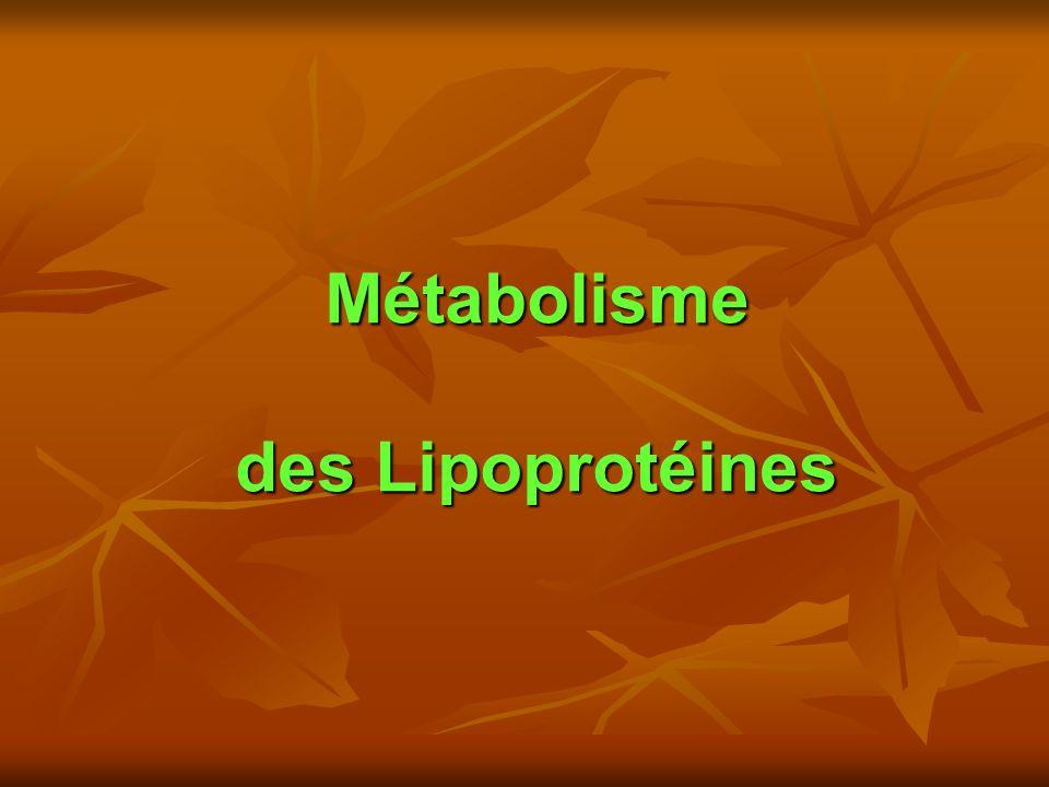 Métabolisme des Lipoprotéines