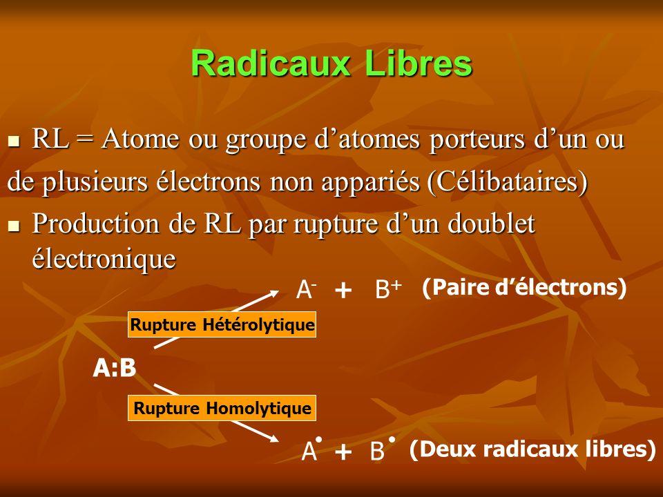 Radicaux Libres RL = Atome ou groupe datomes porteurs dun ou RL = Atome ou groupe datomes porteurs dun ou de plusieurs électrons non appariés (Célibataires) Production de RL par rupture dun doublet électronique Production de RL par rupture dun doublet électronique A:B A-A- B+B+ + (Paire délectrons) Rupture Homolytique Rupture Hétérolytique (Deux radicaux libres) +BA