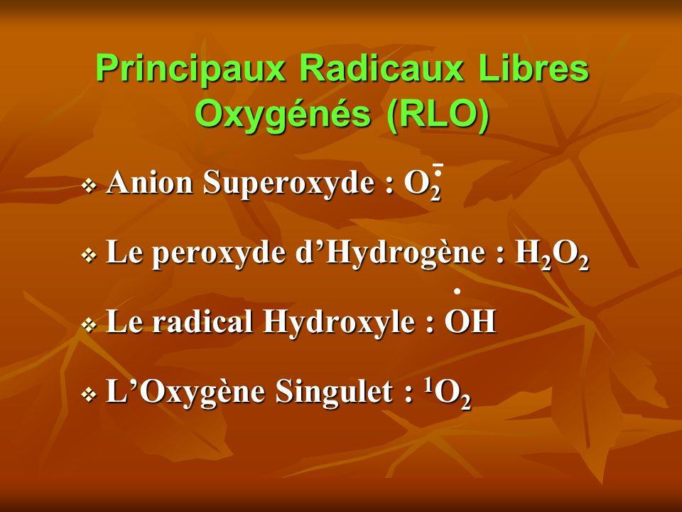 Principaux Radicaux Libres Oxygénés (RLO) Anion Superoxyde : O 2 Anion Superoxyde : O 2 Le peroxyde dHydrogène : H 2 O 2 Le peroxyde dHydrogène : H 2 O 2 Le radical Hydroxyle : OH Le radical Hydroxyle : OH LOxygène Singulet : 1 O 2 LOxygène Singulet : 1 O 2