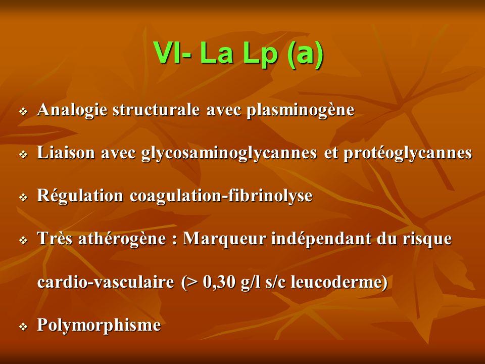VI- La Lp ( a ) Analogie structurale avec plasminogène Analogie structurale avec plasminogène Liaison avec glycosaminoglycannes et protéoglycannes Liaison avec glycosaminoglycannes et protéoglycannes Régulation coagulation-fibrinolyse Régulation coagulation-fibrinolyse Très athérogène : Marqueur indépendant du risque Très athérogène : Marqueur indépendant du risque cardio-vasculaire (> 0,30 g/l s/c leucoderme) cardio-vasculaire (> 0,30 g/l s/c leucoderme) Polymorphisme Polymorphisme