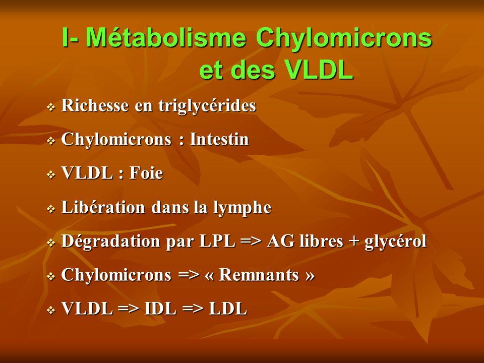 I- Métabolisme Chylomicrons et des VLDL Richesse en triglycérides Richesse en triglycérides Chylomicrons : Intestin Chylomicrons : Intestin VLDL : Foie VLDL : Foie Libération dans la lymphe Libération dans la lymphe Dégradation par LPL => AG libres + glycérol Dégradation par LPL => AG libres + glycérol Chylomicrons => « Remnants » Chylomicrons => « Remnants » VLDL => IDL => LDL VLDL => IDL => LDL
