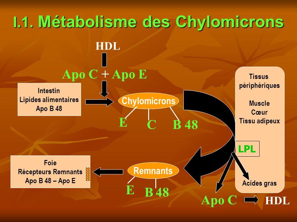 I.1. Métabolisme des Chylomicrons Intestin Lipides alimentaires Apo B 48 Chylomicrons Tissus périphériques Muscle Cœur Tissu adipeux Acides gras Remna