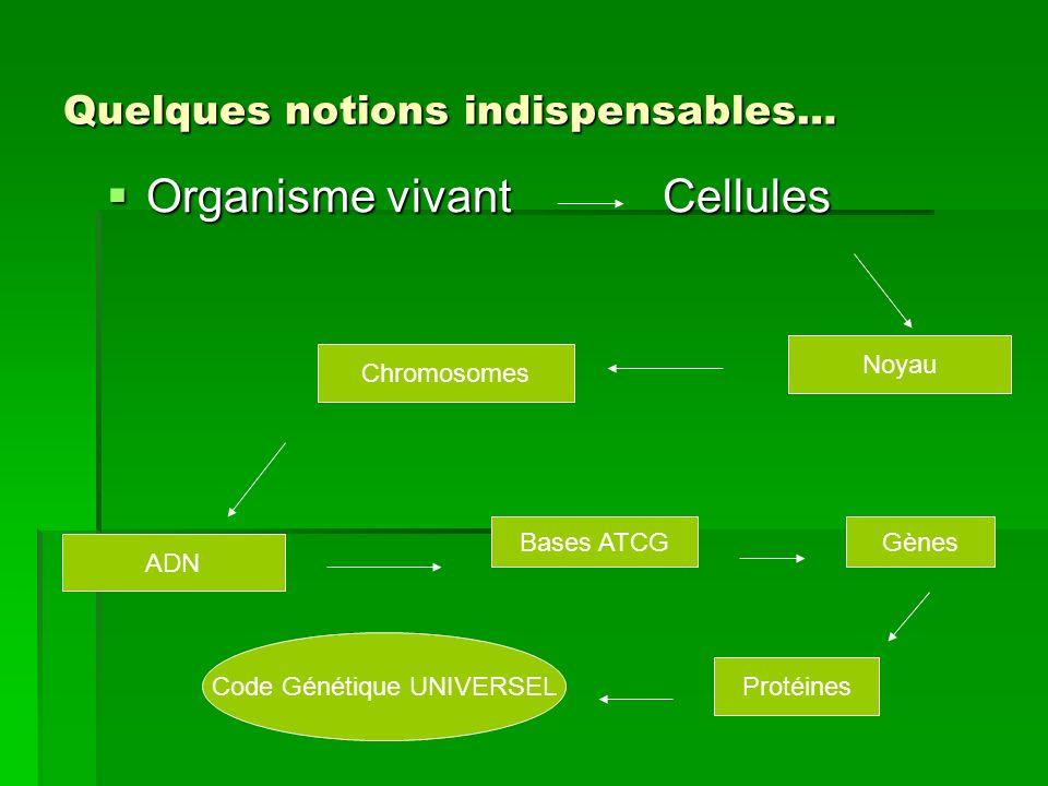 Organisme vivant Cellules Organisme vivant Cellules Noyau Chromosomes ADN Bases ATCG Gènes Protéines Code Génétique UNIVERSEL