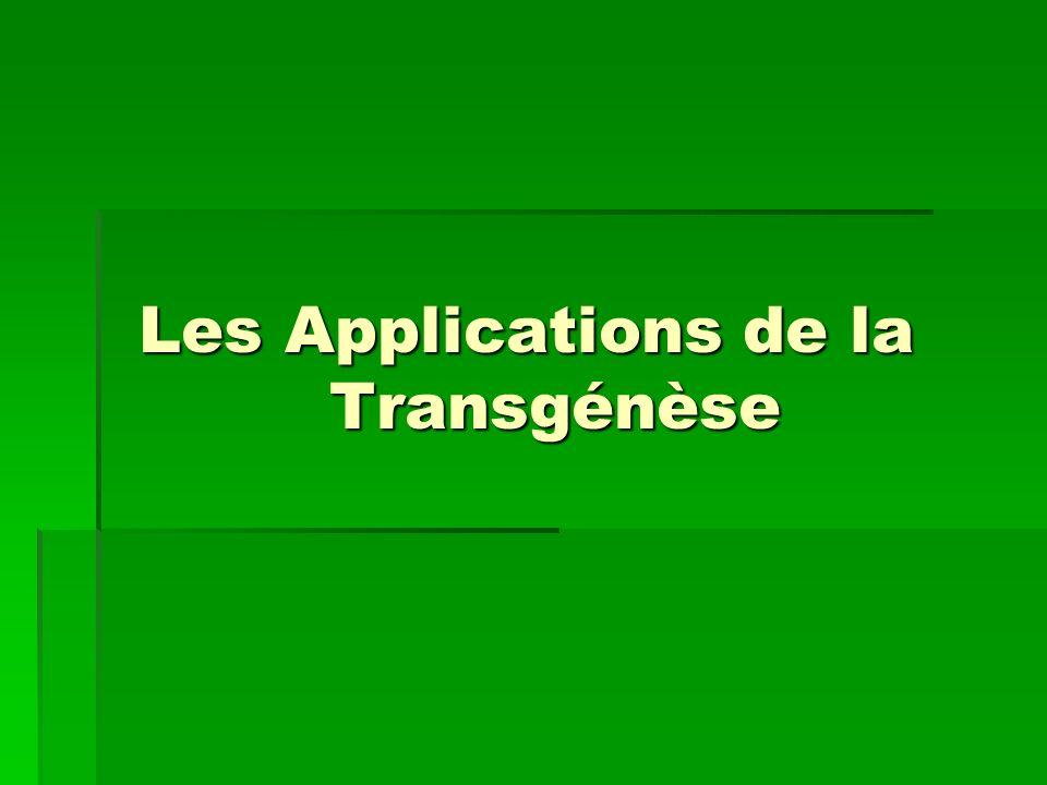 Les Applications de la Transgénèse
