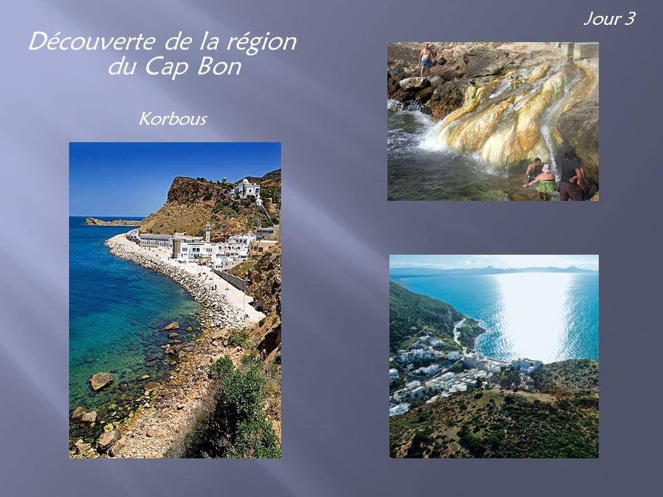 Découverte de la région du Cap Bon Korbous Jour 3