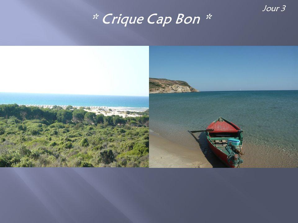 * Crique Cap Bon * Jour 3