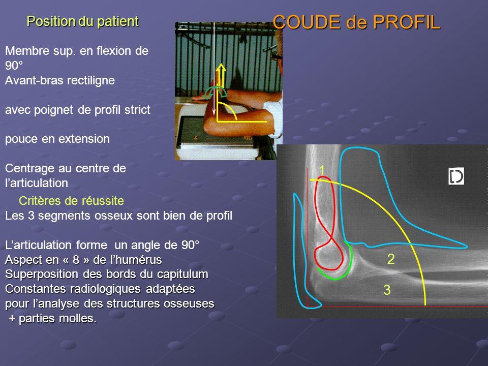 Position du patient Membre sup.